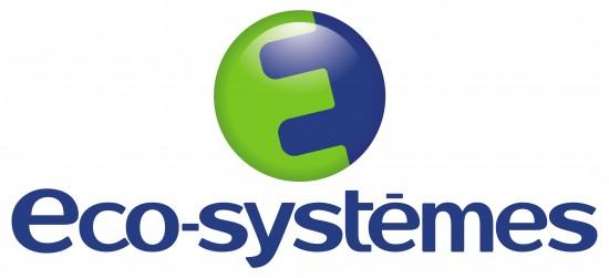 LOGO ECO SYSTEME TD